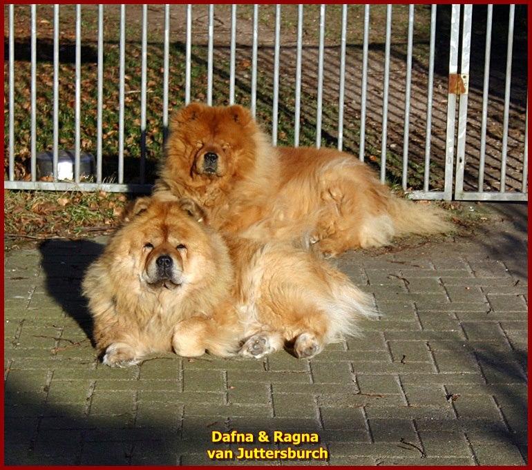 Dafna en Ragna van Juttersburch