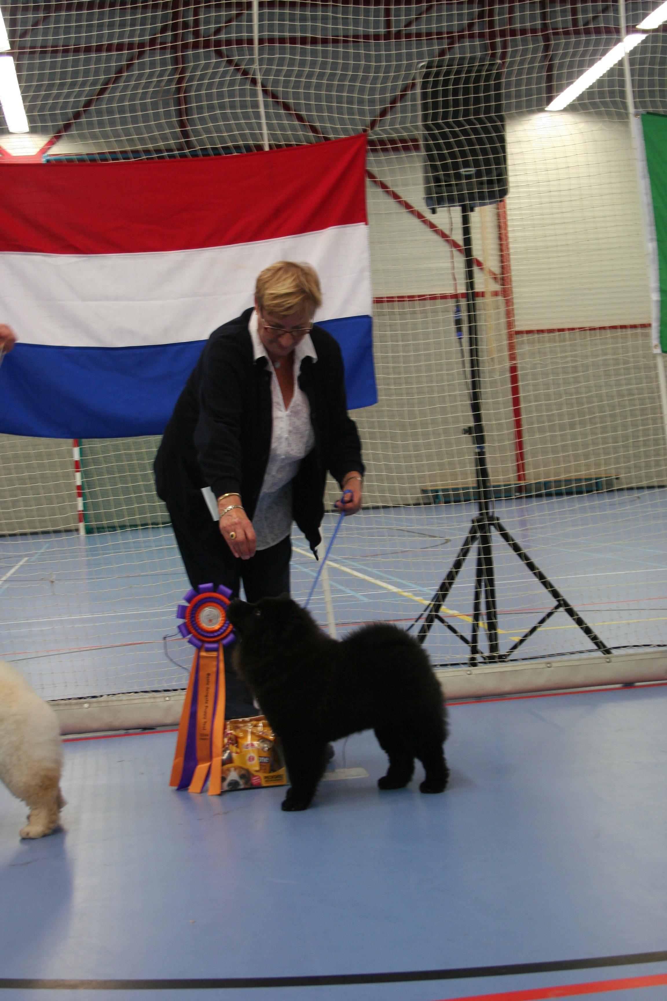 1e plaats jongste puppy klasse teven