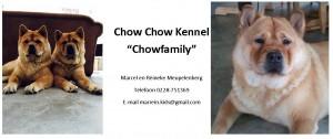 Chowfamily voorstel 2 banner