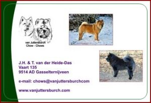 advertentie Juttersburch