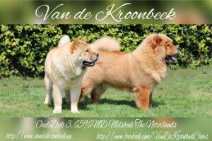 v.d. Kroonbeek