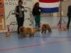 2e en 3e plaats jongste puppy reuen